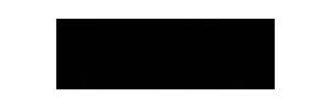 icon singapore logo